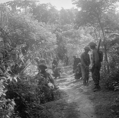 Indian and British troops move cautiously along a jungle track round the town of Gresik.