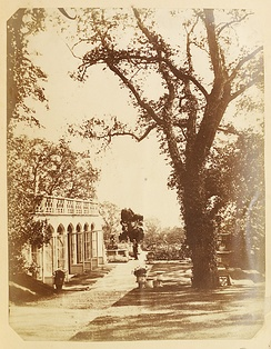 The Orangery, Margam. Photographed in the 1850s