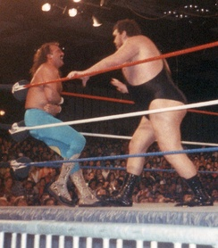 Roussimoff's feud with Jake Roberts derived from Roussimoff's fear of snakes.
