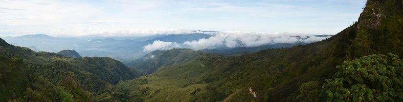 Panorama of the Kipengere Range and its forests taken from the edge of the Kitulo Plateau looking west.