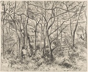 The Woods at L'Hermitage, Pontoise, 1879, softground etching, aquatint, and drypoint on china paper (sixth state). Metropolitan Museum of Art