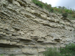 Turbidite (Gorgoglione Flysch), Miocene, South Italy