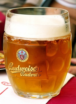 The Reinheitsgebot law of 15th century Holy Roman Empire allowed barley as the only grain for brewing beer (Czech beer Budweiser Budvar depicted).