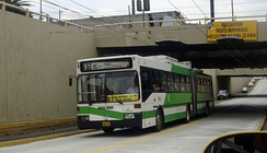 The Trolebús bus rapid transit system that runs through Quito. It is the principal BRT in Ecuador.