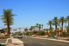 Palm trees line a busy four-lane street