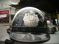 A helmet for traffic police in Bangkok, Thailand August 31, 2010.