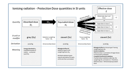 "Graphic showing relationship of ""protection dose"" quantities in SI units"