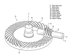 Face worm gear