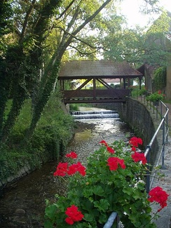 A small river runs between tree lined banks. Geraniums bloom in flower boxes hanging from a fence.