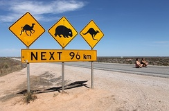 Eyre Highway west of the Nullarbor, South Australia