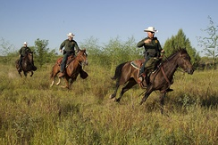 Border Patrol agents in southern Texas in 2013