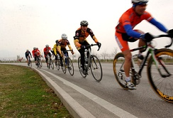 Cyclists drafting behind one another, forming a paceline