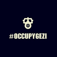 Some of the protesters have styled themselves as #OccupyGezi.