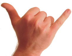Photo of back of human wrist and hand. The thumb and pinkie are extended and the other fingers are folded against the palm.