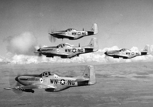 116th Fighter Squadron - P-51 Mustangs.jpg