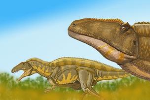 Акрокантозавры в представлении художника