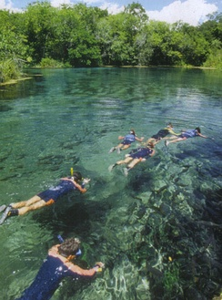 Snorkeling in the city of Bonito, Mato Grosso do Sul. The rivers in the region are known for their crystal clear waters.