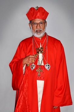 Cardinal George Alencherry, head of the Syro-Malabar Catholic Church in India