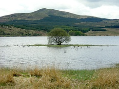 The Carron Valley Reservoir in central Stirlingshire