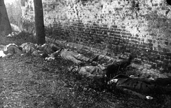 Dead revolutionaries after summary execution in March 1919