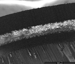 "A sideprofile of an Easton Carbon One arrow with a spine of 900, taken with a scanning electron microscope (SEM). The arrow is a bond of two carbon tubes, an inner and an outer tube (black wires). In between both carbon layers, another fiber is used (white fiber). This second fiber is an Mg-Al-Si-fiber. The ""white"" fiber is twisted around the inner carbon tube. The fibers of the carbon tubes are not twisted, to ensure a maximum of possible mechanical tension of the arrow. The Mg-Al-Si-fiber enhances the flexibility of the arrow. The diameter of a single carbon fiber is approx. 7 µm."