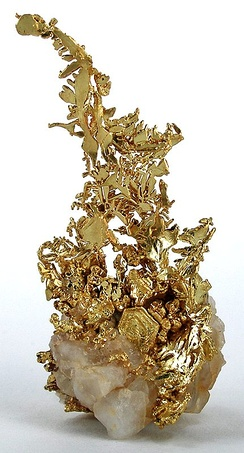 Very fine old crystalline-gold specimen, probably from Tuolumne County. Sold in the 1950s for $65; more recently for $12,500. Published twice.[4]