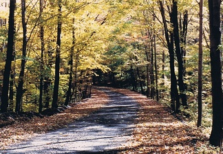Autumn on a small road in Somerset County.