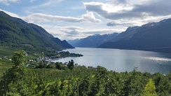 Hardanger is one of Norway's most important sources of fruit, providing approximately 40% of the country's fruit production, including apples, plums, pears, cherries, and redcurrants.