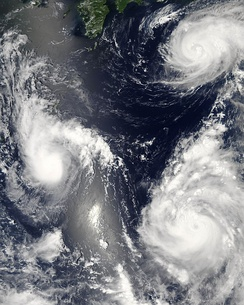 Three different tropical cyclones spinning over the western Pacific Ocean on August 7, 2006 (Maria, Bopha, Saomai.). The cyclone on the lower right has intensified into a typhoon.