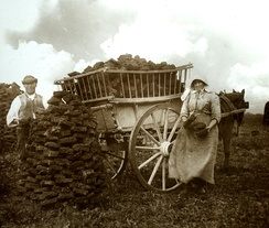 Peat gatherers at Westhay, Somerset Levels in 1905