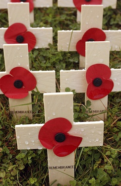 Wooden crosses with remembrance poppies on them