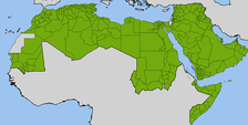 Administrative divisions in the Arab League.