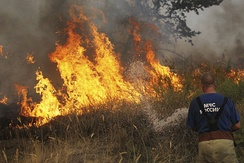 A Russian firefighter extinguishing a wildfire