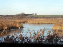 Stodmarsh, a National Nature Reserve in Kent.