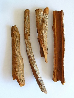 An example of a herbal medicine resource: the bark of the cinchona tree contains quinine, which today is a widely prescribed treatment for malaria. The unpurified bark is still used by some who can not afford to purchase more expensive antimalarial drugs.