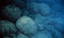 Pillow basalts on the south Pacific seafloor