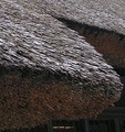 A closeup of the thatching.