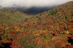 Graveyard Fields in autumn