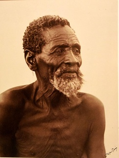 Portrait of a bushman. Alfred Duggan-Cronin. South Africa, early 20th century. The Wellcome Collection, London