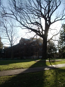 Bicentennial Oak, facing Buttrick Hall, predates the Revolutionary War.