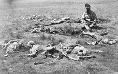 The remains of dead Crow Indians killed and scalped by Sioux c. 1874