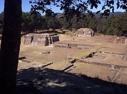 View across a series of neatly maintained low ruins, consisting of a labyrinthine series of overlapping rectangular basal platforms. Two small pyramid structures dominate the view, with pine forest providing the backdrop.