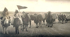 An image of an early 20th-century Oirat caravan, traveling on horseback, possibly to trade goods.