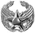 Air Force Commander's Insignia