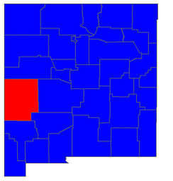 2006 New Mexico gubernatorial election results by county