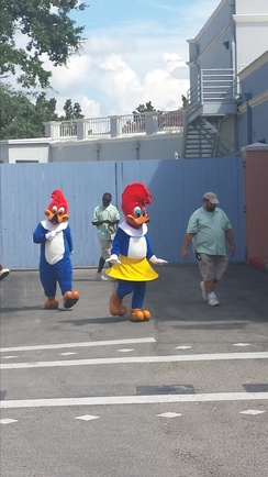 Woody and Winnie Woodpecker are among the mascots of Universal Studios