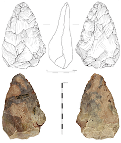 The hand axe discovered in 1970s in Hallow. Potentially the first Early Middle Palaeolithic artefact from the West Midlands.