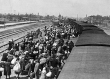 Jews from Carpathian Ruthenia arriving at Auschwitz, May 1944