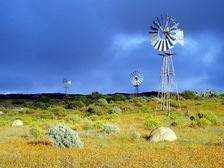 Windmills in Namaqualand, Northern Cape