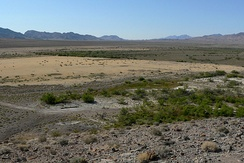 Valley bottom at Ash Meadows National Wildlife Refuge